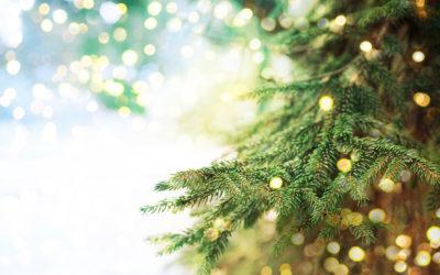 Bonnes fêtes de fin d'année …